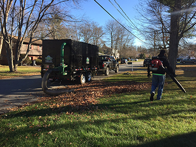 Salem, NH MA Fall Cleanup